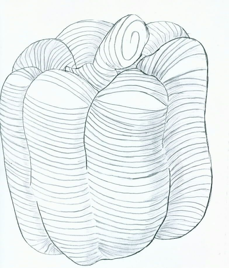 cross contour drawing tutorial